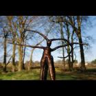 Bronze Sculpture - Centaur III